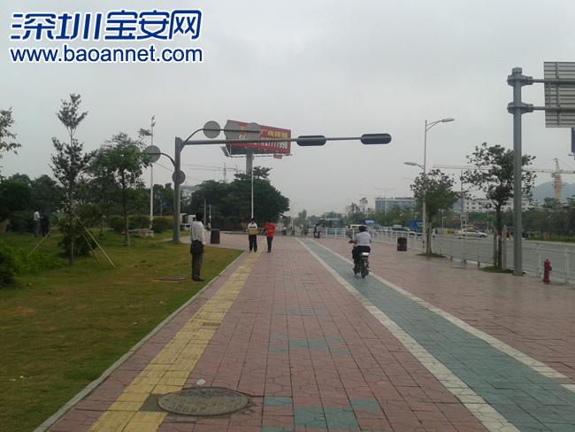 车辆很难注意到这个信号灯指示 奇 宝安大道固戍段红绿灯 高清图片