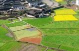 2012全国两会策划:农村土地改革