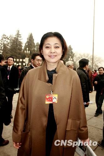 倪萍资料图片-央视名嘴今何在 倪萍当评委 黄健翔 打酱油