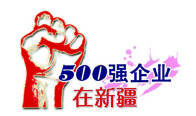 广汇集团加快进军世界500强步伐图片