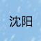 """松绑限购""""一日游"""":"""