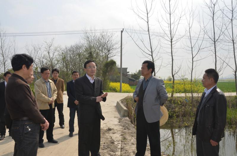 3月31日上午,县委书记王民生在县政协主席夏明生陪同下,率县委办、农委、招商局、国土局、规划局负责人到白湖镇调研。