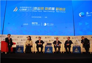 专题讨论:人民币国际化下的中国债券市场